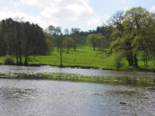 Harewood, The fish ponds at Harewood House, West Yorkshire © Dave Berkeley